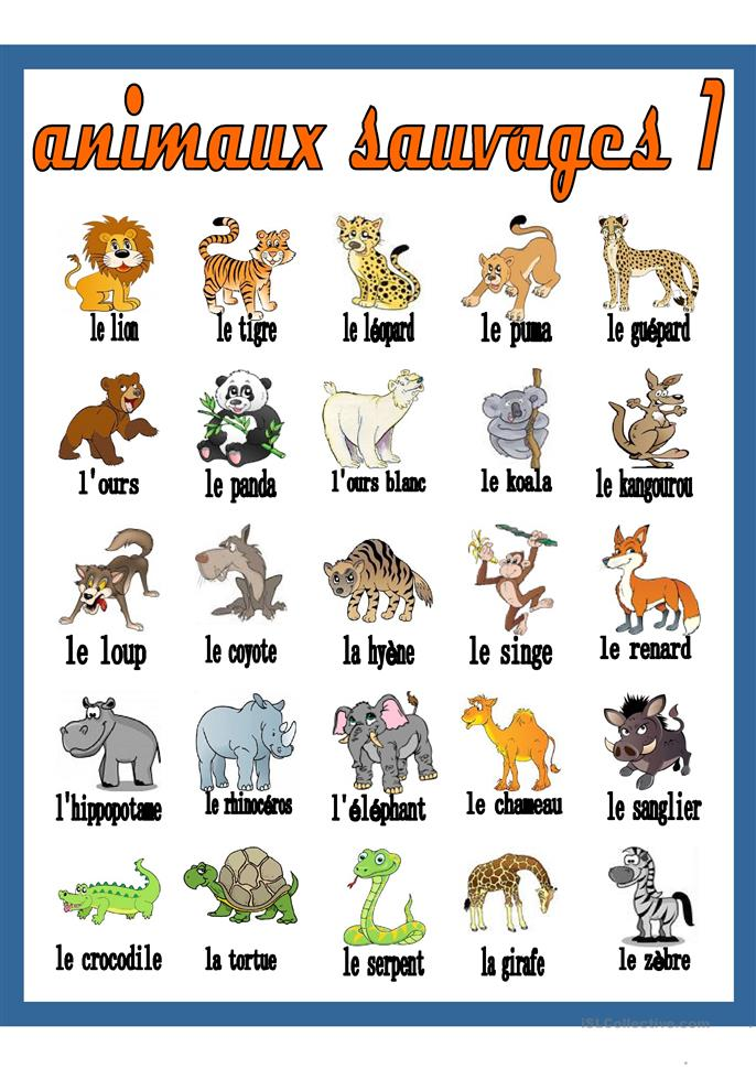 http://www.educlasse.ch/activites/pbill/animaux/milieu_animaux.php